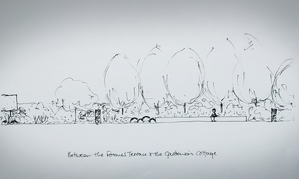 Lindley Garden Design Sketch