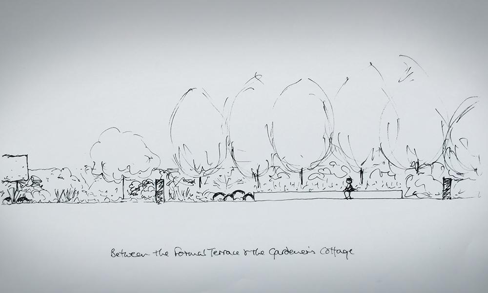Lindley Garden Design Sketch